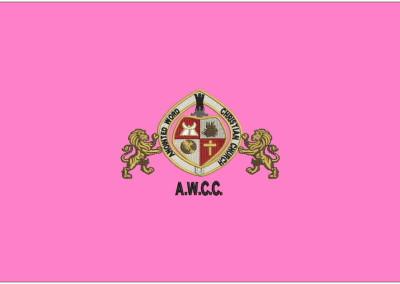 ANIONTED logo
