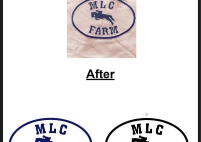 MLC-01